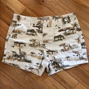 Banana republic zoo print shorts